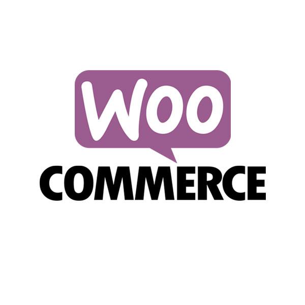 3V, a Detroit, Michigan based Woo-Commerce developer